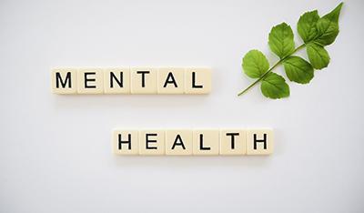 PRIDE Webinar – Research Careers, well-being and mental health
